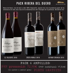 PACK DO Ribera del Duero